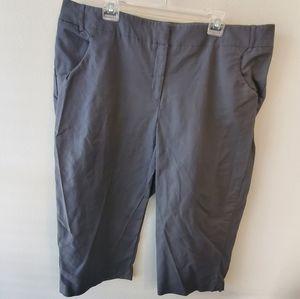 DALIA capri pants grey plus size 22